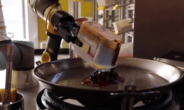 Exotic-Cuisine Robot Chef